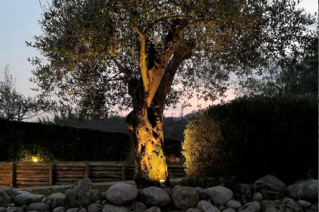 Pareti Esterne Illuminate : 5 idee con i faretti da giardino a led green